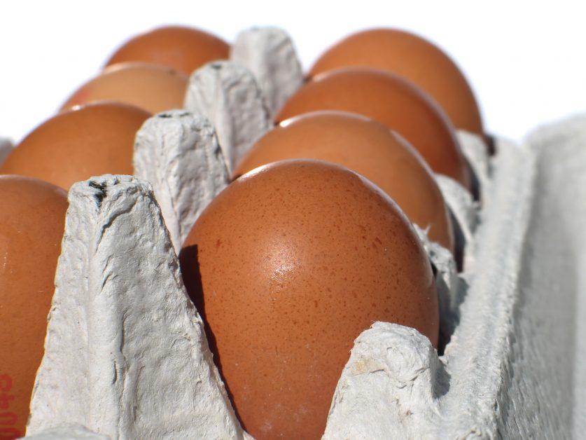 eggs-carton