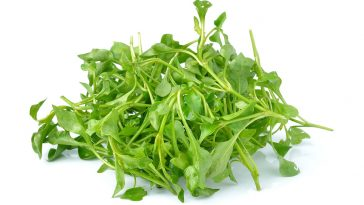 watercress2