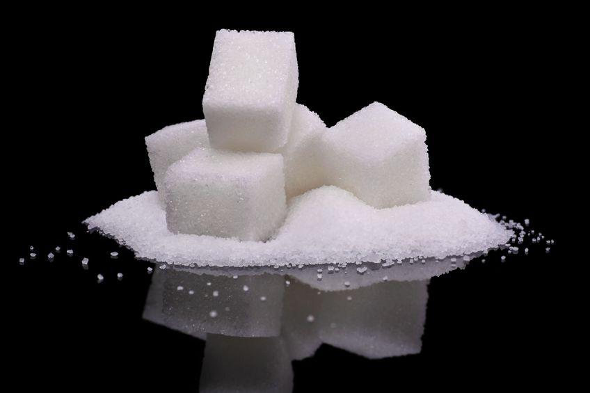 Estudio que debo hacer para perder grasa corporal carbohidratos