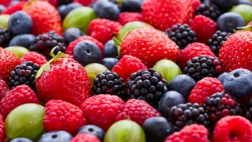 Berries Background macro, selective focus.