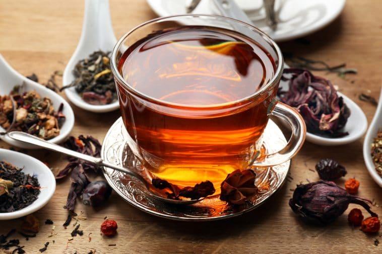 como debo tomar el te oolong para adelgazar